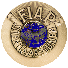 "2019 | Praha, CZ, FIAP Bronze Medal, Portrait – Photo ""Nostalgia"""